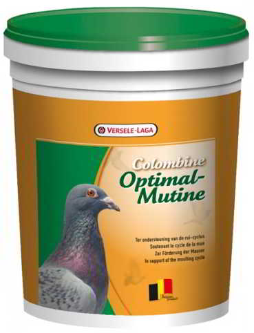 COLOMBINE OPTIMAL-MUTINE