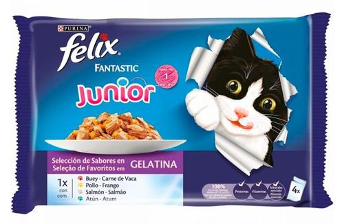 FELIX FANTASTIC JUNIOR 4 X 100 GR